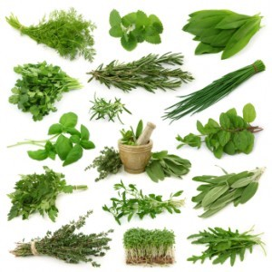 Top 10 Anti-Inflammatory Herbs