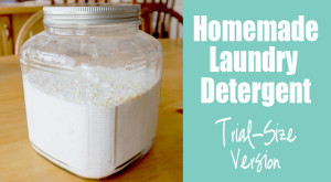 Homemade Laundry Detergent – Trial-Sized Version