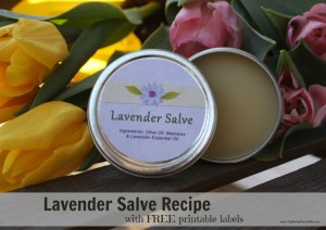 Homemade Lavender Salve Recipe