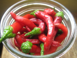 A Recipe for Homemade, Homegrown Cayenne Pepper Hot Sauce