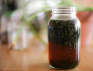 Nourishing Weedy Tea Recipe