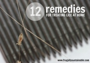 12 Remedies for Treating Lice at Home