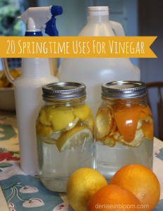 Top 20 Springtime Uses For Vinegar