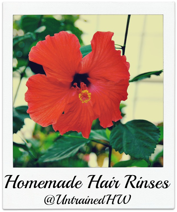 Homemade Hair RInses