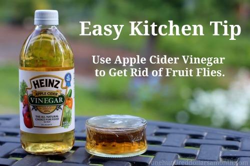 how to get rid of fruit flies recipe herbs and oils hub. Black Bedroom Furniture Sets. Home Design Ideas