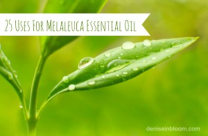 25 Uses For Melaleuca (Tea Tree) Essential Oil