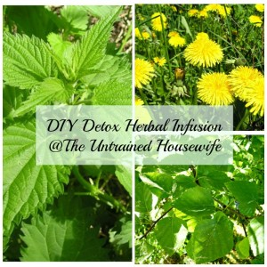 How to Make a Detox Herbal Infusion
