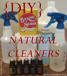 DIY Natural Cleaners – 7 Easy Recipes to Help You Clean Everything from Windows to Grout