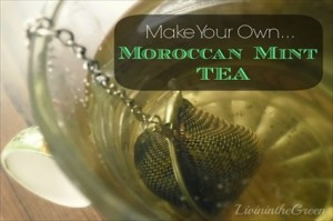 Make Your Own Moroccan Mint Tea