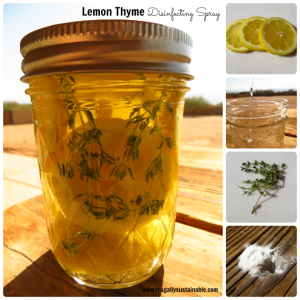How to Make Lemon Thyme Herbal Disinfecting Spray