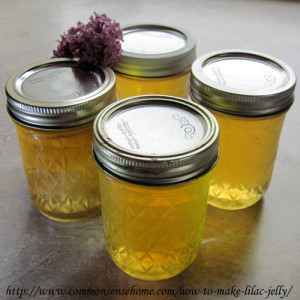 How to Make Homemade Lilac Jelly