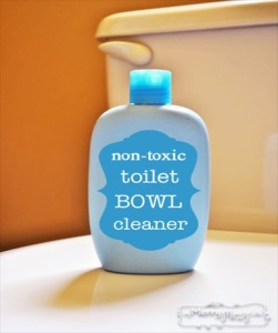 Homemade Non-Toxic Toilet Bowl Cleaner Recipe
