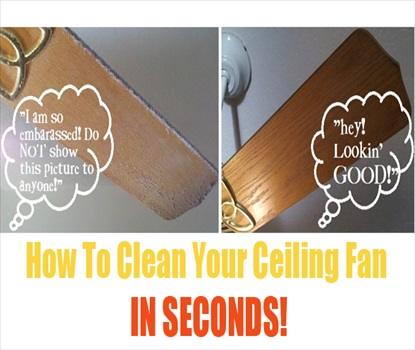 How To Clean Your Ceiling Fan in SECONDS!