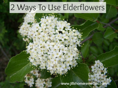 Two Simple and Effective Ways to Use Elderflowers