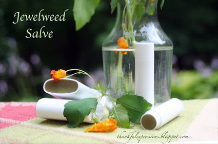 How to Make Jewelweed Salve for Poison Ivy & Skin Rashes