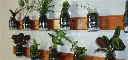 DYI: Build a Mason Jar Herb Garden