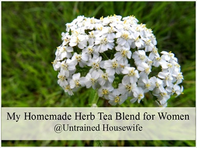 Homemade Herb Tea for Women