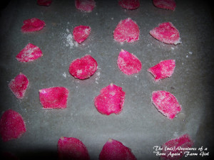How to Make Candied Rose Petals