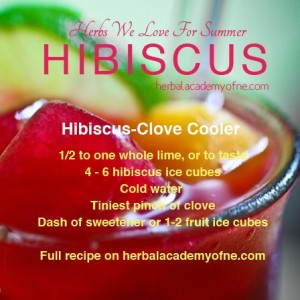 Homemade Hibiscus-Clover Cooler