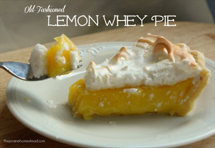 Homemade Old-Fashioned Lemon Whey Pie