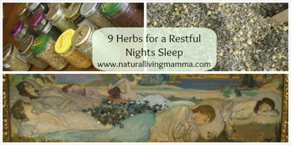 9 Herbs for a Restful Night's Sleep