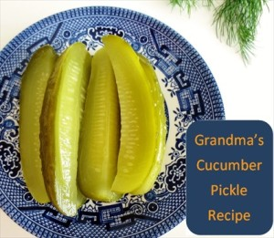 Grandma's Cucumber Dill Pickles Recipe