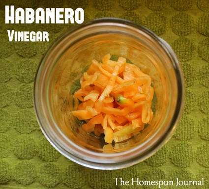 How to Make Spicy Habanero Vinegar