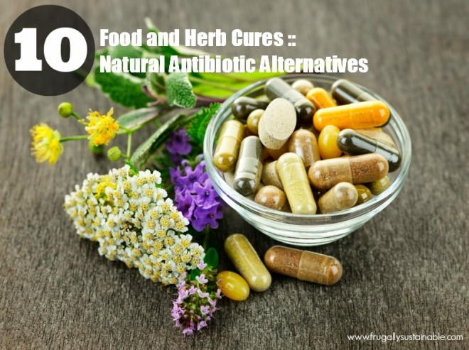 http://frugallysustainable.com/2013/08/food-and-herb-cures-10-natural-antibiotic-alternatives/