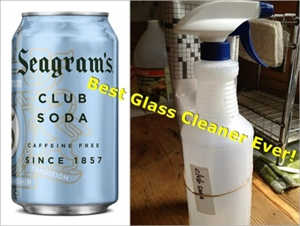 The Simplest & Best Green Glass Cleaner Ever! (Tip)