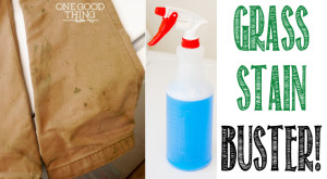 Grass Stain Buster! The Ultimate DIY Laundry Spot Remover