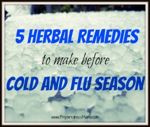 5 Herbal Remedies to Make Before Cold Season