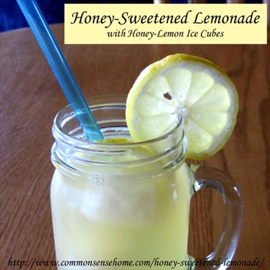 Homemade Honey-Sweetened Lemonade with Honey-Lemon Ice Cubes