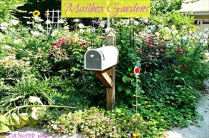 Adding Curb Appeal With Mailbox Gardens