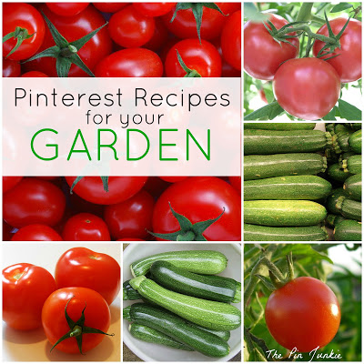 Summer Garden Recipes for Tomatoes and Zucchini