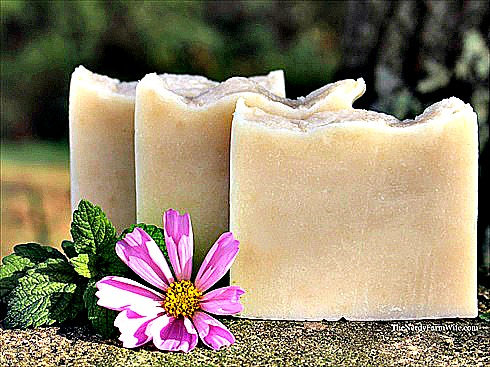 How to Make Homemade Lemon Balm Soap