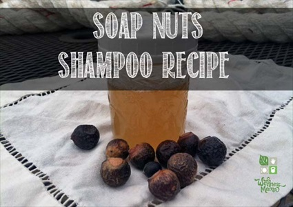 Soap Nuts Shampoo