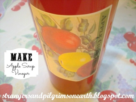 "How to Make DIY Apple Cider ""Scrap"" Vinegar"