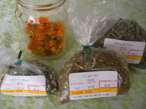 Homemade Calendula Healing Salve Recipe