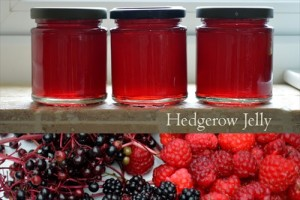 Homemade  Hedgerow Jelly Recipe