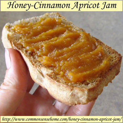 Homemade Honey-Cinnamon Apricot Jam Recipe