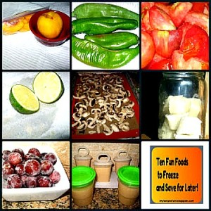 Ten Foods You Can Freeze to Preserve (+10 More)