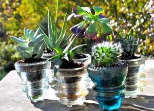 DIY – Reuse Glass Insulators for Succulent Planters