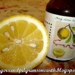 Simple Homemade Honey Lemon Cough Syrup Recipe