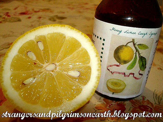 Simple Homemade Honey Lemon Cough Syrup Recipe