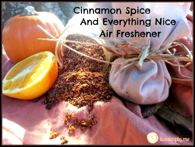 How to Make a Natural Cinnamon Spice Air Freshener