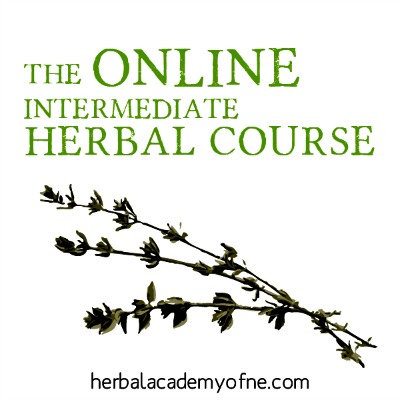 herbal course
