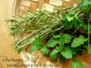 Homemade Rosemary Mint Herbal Shampoo & Body Bar Tutorial