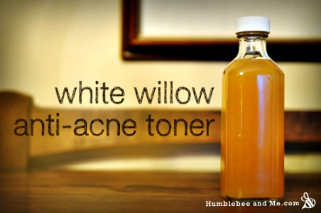 How to Make a White Willow Bark Anti-Acne Toner