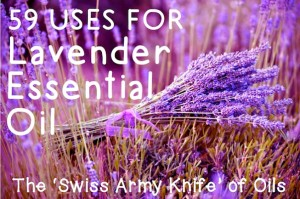59 Uses for Lavender Essential Oil