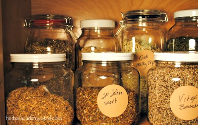 Can You Really Become A Certified Herbalist?